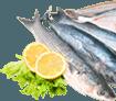 Sardines Left Thumb