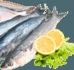 Sardines Right Thumb